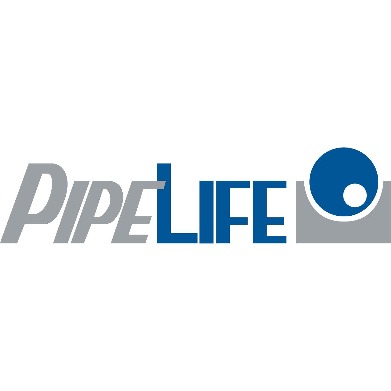 Logo PipeLife