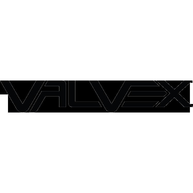 Logo Valvex
